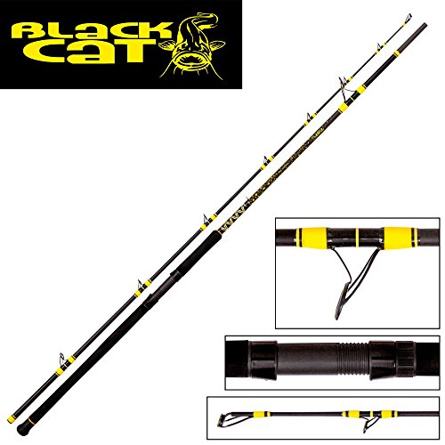 Black Cat Passion Pro DX Caña...